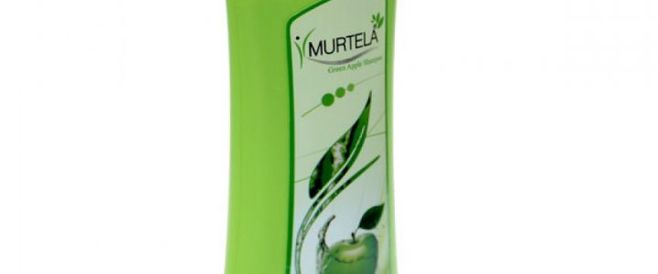 Best Reetha Shampoo In India