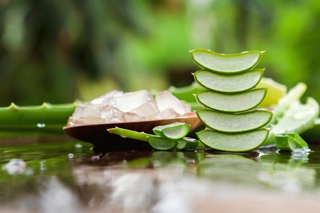 Why Aloe Vera Is Important For Skin